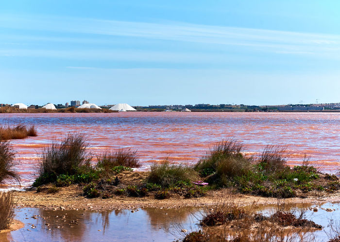 Las Salinas, salt lake of Torrevieja, declared one of the healthiest in Europe, according to the World Health Organization. Province of Alicante. Costa Blanca, Spain Alicante Province Spain Andalusia Blue Sky Costa Blanca Dead Europe Horizon Over Land La Mata Landmark Landscape Las Salinas Mud Natural Nature Nobody Pink Water Salt Lake Scenery Seawater SPAIN Spanish Spring Sunny Day Torrevieja Tropical Climate