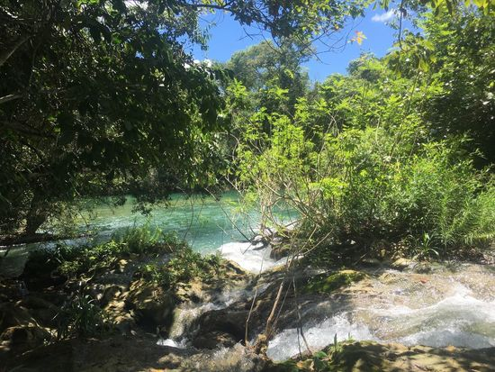 EyeEmNewHere EyeEmBestPics Tropical Climate Lush - Description EyeEm Best Edits Beauty In Nature Tree Water Nature Scenics Beauty In Nature Green Color Tranquility Outdoors Tranquil Scene Growth Forest Lush Foliage Day River No People Sky Waterfall Green Color EyeEm Best Shots