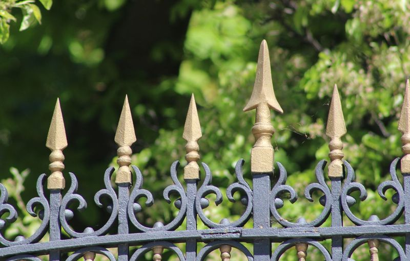 Close-up of metal gate against trees