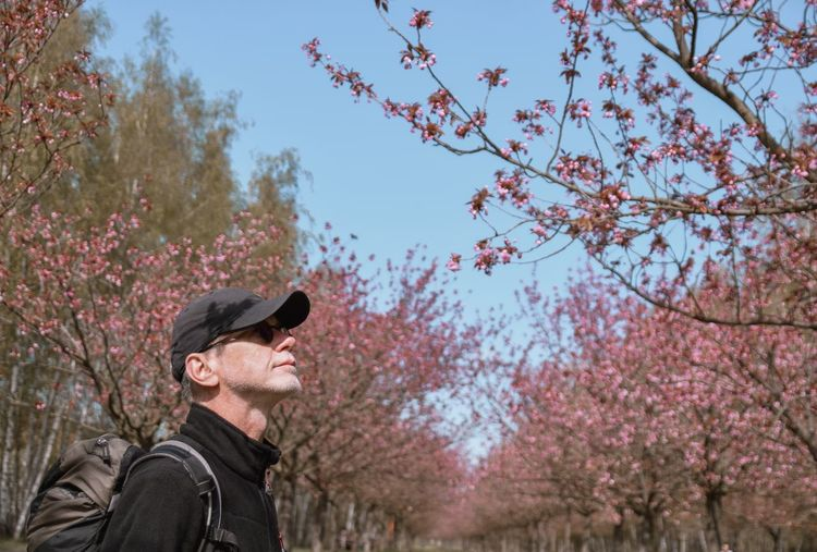 Low angle view of man standing by cherry tree against sky