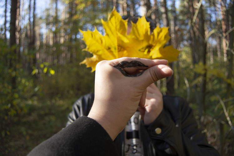 Creativity Art Human Hand Hand Plant Human Body Part Yellow Holding Finger Outdoors Body Part Lifestyles Focus On Foreground Personal Perspective Nature Leisure Activity One Person Beauty In Nature Autumn Creative Autumn colors Leaf Obscured Face Perspectives on Nature WoodLand Lifestyle