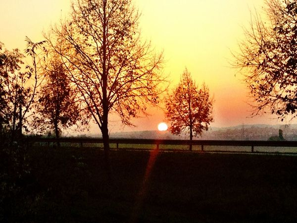 Skylining Nature Winter Sunset