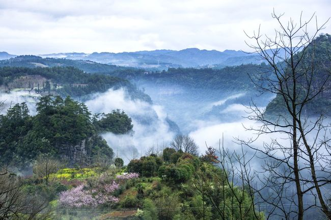 Beautiful mountains scenery in the mist Agriculture Background Beauty In Nature Countryside Day Fog Guilin, Guangxi, China Landscape Mist Mountain Mountain Range Natural Beauty Nature No People Outdoors Peak Picturesque Rural Scene Scene Scenery Scenics Sky Springtime Tree Wonderland