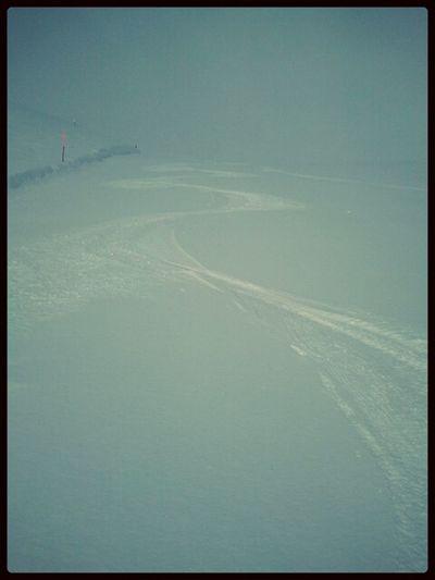 My first ski track!! Golamasgo Ski Adamelloski Pontedilegno