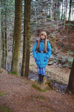Carpaty Skole Forest Traveling