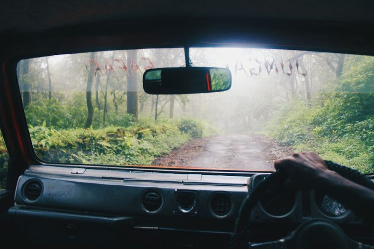Tranquility Transportation Mode Of Transport Car Car Interior Human Body Part Outdoors Travel Traveling Landscape Forest Fog Foggy Driving On The Way Vscocam VSCO Greenery Nature Beauty In Nature Road Pachmarhi Hello World EyeEm Best Shots - Nature EyeEm Best Shots The Great Outdoors - 2017 EyeEm Awards The Week On EyeEm Lost In The Landscape An Eye For Travel It's About The Journey
