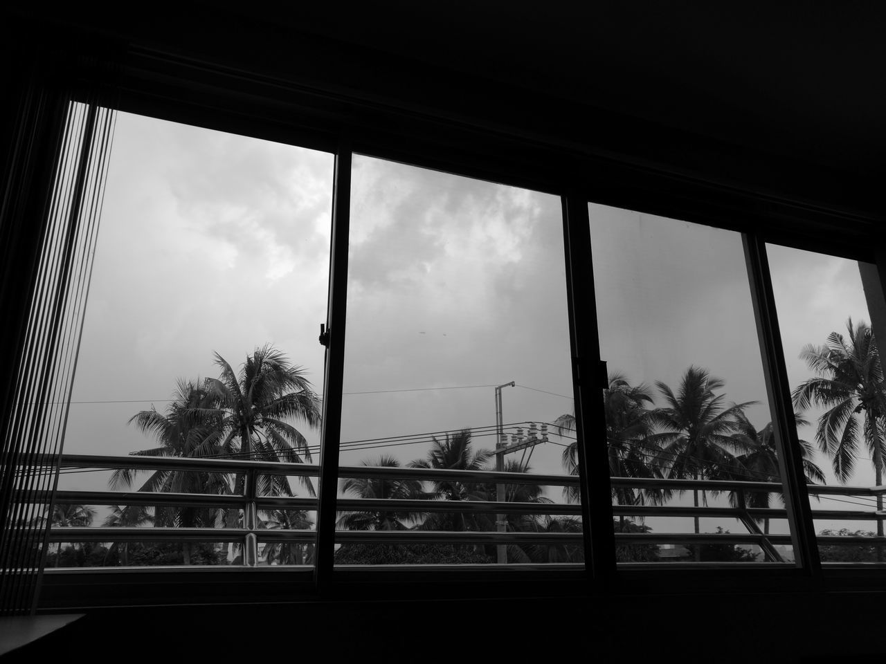 window, tree, palm tree, indoors, sky, cloud - sky, day, no people, looking through window, nature, built structure, architecture