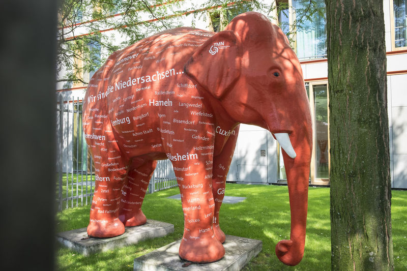 Elephant on stand Animal Body Part Animal Head  Close-up Day Elephant Focus On Foreground Glass Fibre Ekephant Grass Herbivorous Livestock Mammal Nature No People Outdoors Portrait Red Elephant Text