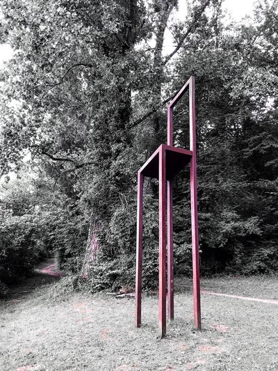 No People Day Metal Nature Absence Playground Architecture Outdoors Tree Seat