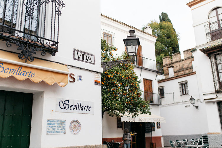 Vida Andaluciaviva Andalucía Andalusia Architecture Architecture Architecture_collection Art Art, Drawing, Creativity Arts Culture And Entertainment Building Exterior Built Structure Ceramic Ceramics Day No People Outdoors Sevilla Seville Text Tree