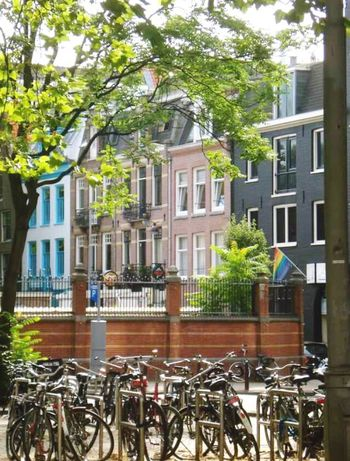 Tree Building Exterior Architecture Outdoors Bicyles Beautiful City Amsterdam Bicyclelife Built Structure No People Traveling Travel Photography Hello World My View