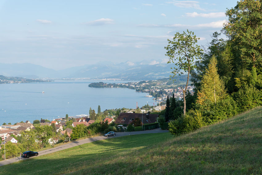 Zürichseerundweg Hiking Trail Waldweg Wanderweg Architecture Beauty In Nature Building Exterior Built Structure Cloud - Sky Day Forest Track Fußweg Grass Green Color Growth Land Nature No People Outdoors Plant Road Scenics - Nature Sea Sky Switzerland Track Trail Transportation Tree Water