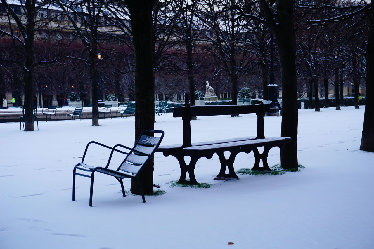 EMPTY BENCH IN PARK DURING WINTER SEASON