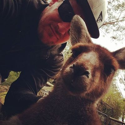 Selfie Kangaroo Mandurahlife Mandurah Toyscollective