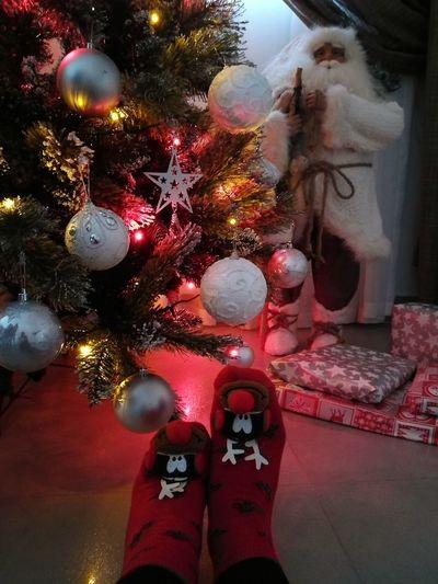 TK Maxx Socksie Christmas Christmas Decoration Christmas Lights Multi Colored Christmas Tree Christmastree Christmas Ornament Christmasfather FatherChristmas Raindeer Raindeersocks Christmassocks Socks Festivesocks