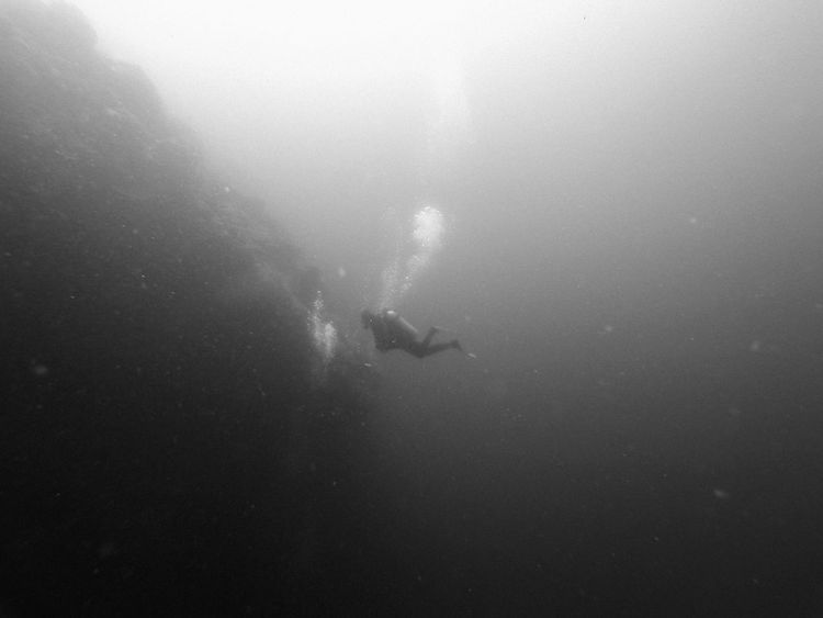 Wall dive on Pescador Island, Moalboal (Cebu, the Philippines) Adventure ASIA Black & White Cebu Exploring Extreme Sports Leisure Activity Lifestyles Nature Outdoors People And Places Philippines Real People Scuba Diver Scuba Diving Sea Life Sport Swimming Travel Travel Destinations Underwater Unrecognizable Person Vacations