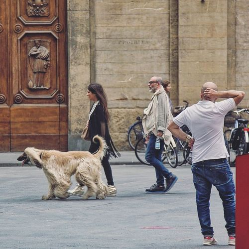 Moda Afghan Hound Firenze Tuscany Street Photography Street Firenze With Love Architecture Love Story Book Cover Style Fashion Hair Blonde Hair Lifestyles City European  What Pet City Life Travel Photography Travel Destinations Gillian McBain Photographer Canon Character VSCO Moving Around Rome