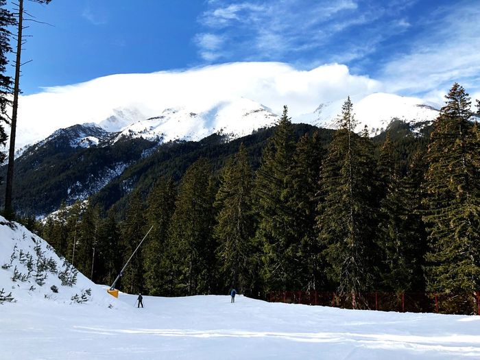 Snow Winter Cold Temperature Mountain Beauty In Nature Sky Nature Weather Outdoors Cloud - Sky Tree Day Tranquility Snowcapped Mountain Mountain Range Tranquil Scene Scenics Landscape No People