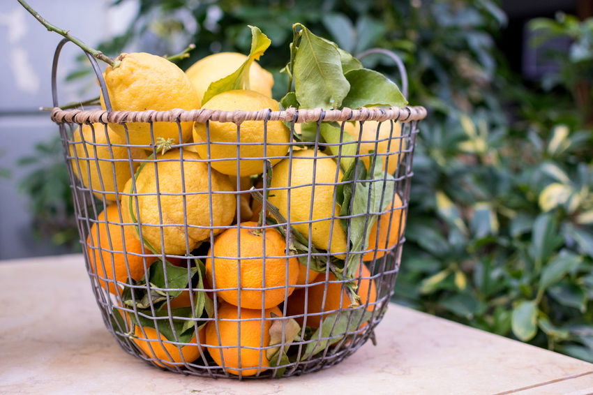 When life gives you lemons, make lemonade Basket Close-up Container Focus On Foreground Food Food And Drink Freshness Fruit Healthy Eating Lemon Nature No People Orange Orange Color Plant Wellbeing Yellow