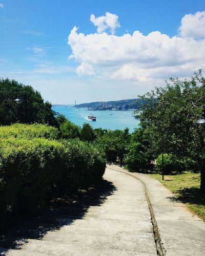 Photographer Photo Photography Green Blue Sea Sea And Sky Blue Sea Istanbul Istanbul Turkey Fatihkorusu Koru