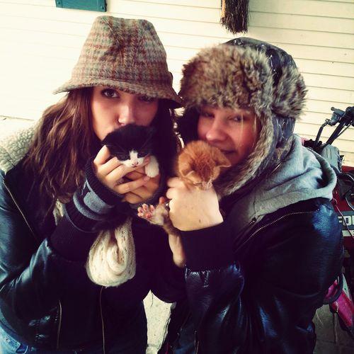 We found kitties! Kittens Socute Hi!