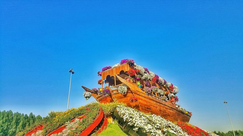 Miracle Garden Dubai❤ Growth Beauty In Nature Flower Miles Away Architecture