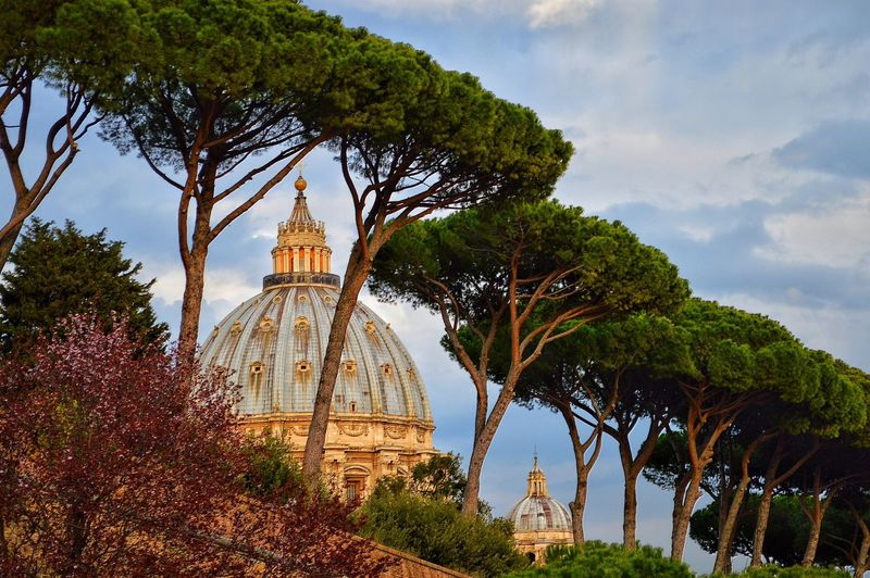 Low angle view of trees by st peters basilica against sky
