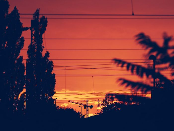 Budapest Hungary Sunlight Sunset_collection Tranquil Tranquility Cable Cloud - Sky Crane Electricity  Electricity Pylon No People Outdoors Power Line  Scenics Silhouette Sunset Tranquil Scene Tree Urbex Urbexphotography
