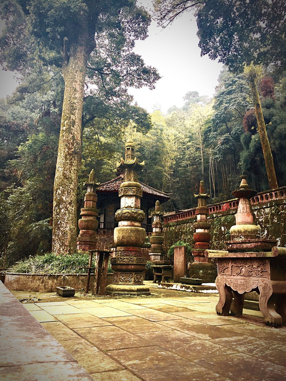religion, tree, spirituality, place of worship, travel destinations, built structure, old ruin, no people, day, architecture, building exterior, beauty in nature, nature, outdoors, ancient civilization