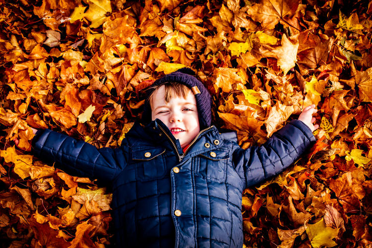 High angle portrait of boy on autumn leaves
