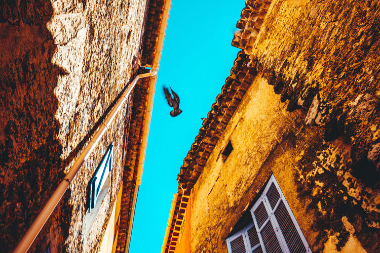 Architecture Blue Sky Building Exterior Built Structure Clear Sky Day Low Angle View Low Angle View Narrow Narrow Street Nature No Cloud In The Sky No Clouds No People Old Buildings Old Stones Old Town Outdoors Sky Stone Material Stone Wall Sunlight Warm Colors Window Windows