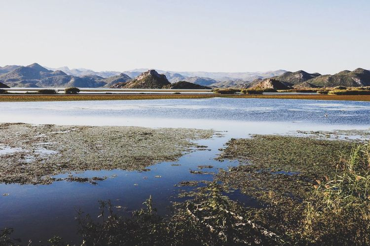 Montenegro Skadar Lake Nationalpark National Park Travel Mountain Nature Beauty In Nature Scenics Mountain Range Water Lake Tranquility Tranquil Scene Outdoors Landscape Day No People Reflection Clear Sky Sky EyeEmNewHere