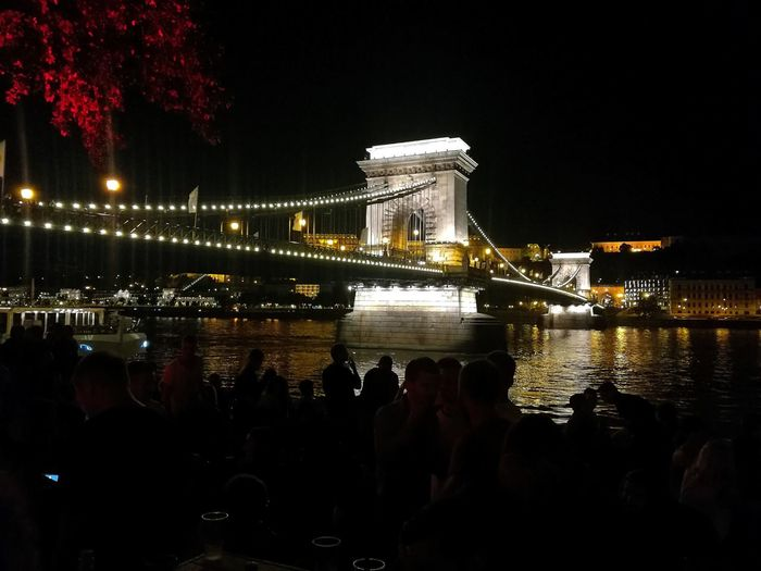 Beauty Danube Nightshot Citylife Travel City Illuminated Water Tree Winter Bridge - Man Made Structure Suspension Bridge Reflection River Sky Chain Bridge Hungarian Culture Budapest