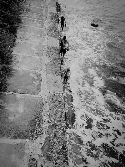 Living Dangerously Seashore