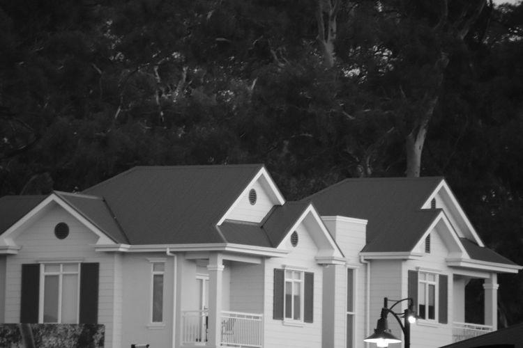 Houses in black and white Tree Plant Architecture Built Structure Building Exterior Real People Nature Building