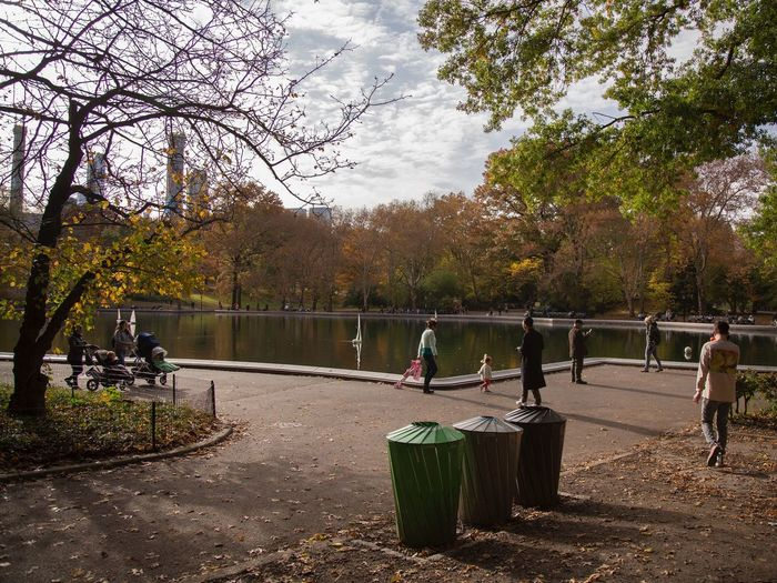 People in park during autumn