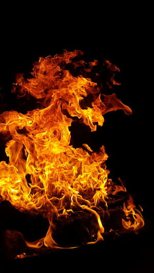 tonight Fire Figures Fire Horse Black Background Red Molten Heat - Temperature Flame Fireball Burning Abstract Close-up Inferno Fire - Natural Phenomenon Hell
