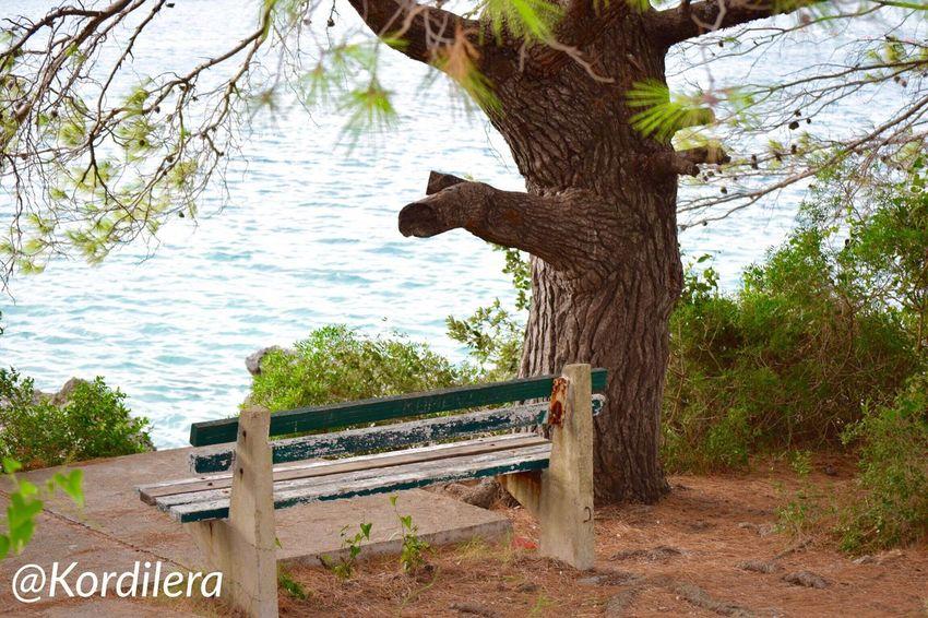 Или вот здесь ✨🌟✨ Hello World Kotor Bay IPhone Photography путешествия Crna Gora Черногория Ig_worldclub Travel Photography Montenegro Taking Photos Travel Foto