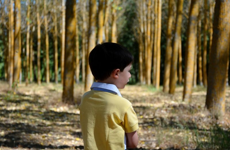 Boy standing against trees in forest