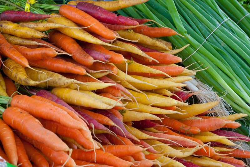Multicolored carrots and green onions Multicolored Carrots Carrots Red Carrots Yellow Carrots Orange Carrots Green Onions Organic Local Food Farmers Market