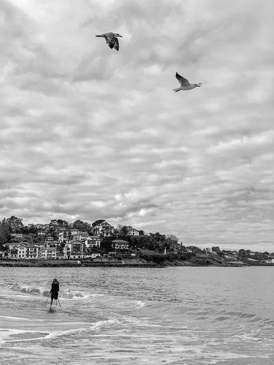 Birds flying over girl at beach against sky