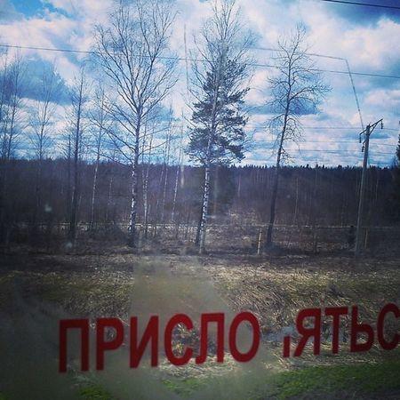 РЖД Train