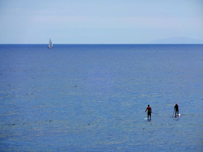 High angle view of people paddleboarding on sea against clear sky