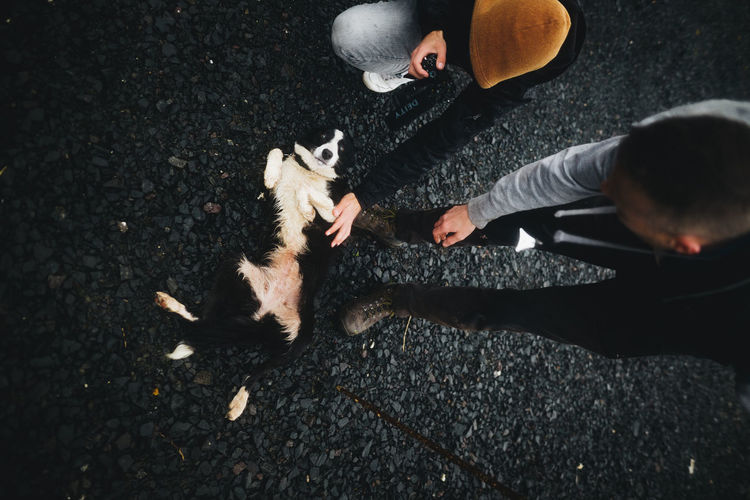 High angle view of man playing with dog