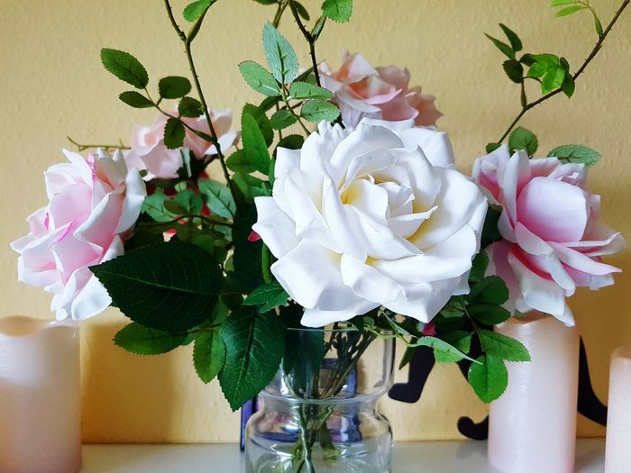 Blumenpracht🌺🍃 Blumenstrauß Roses Rose🌹 Rose - Flower Flower Flowers Flowerporn Flower Collection White White Color White Flower