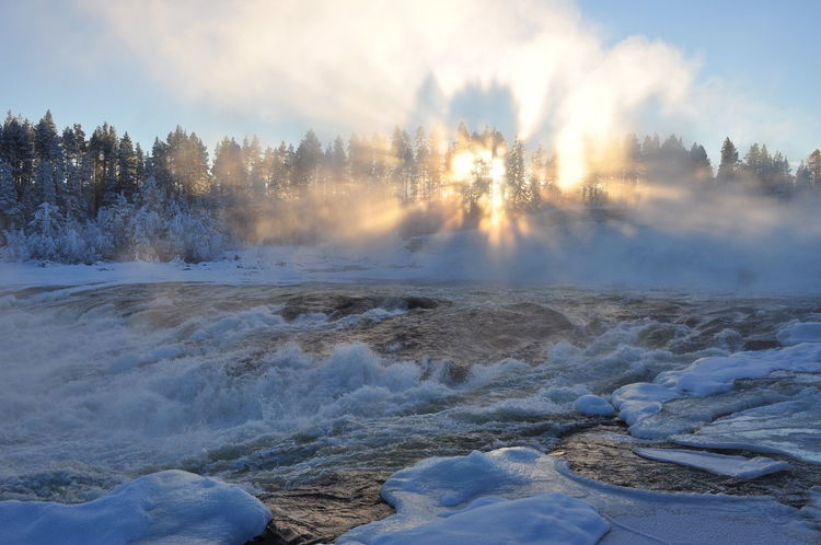 Beauty In Nature Cold Temperature Day Geyser Hot Spring Landscape Motion Nature No People Outdoors Power In Nature Scenics Sky Snow Steam Storforsen In Winter Tranquil Scene Tranquility Travel Destinations Tree Water Winter