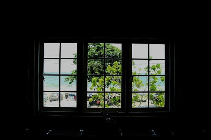 Window Indoors  No People Tree Seaview Seaviewcollection Seaview Beach Seaview Resturant Seaview Collection The Week On EyeEm