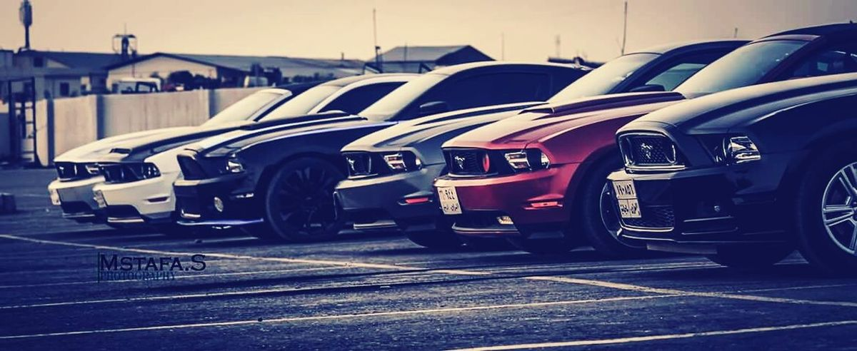 Mustang Ford Mustang Mustang Shelby