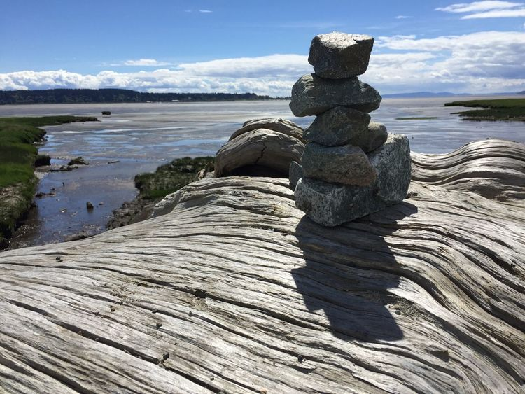 Rocks on driftwood with bay in background Nature Tranquility Water Day Tranquil Scene Outdoors Rock - Object Sky Beauty In Nature Scenics EyeEmNewHere