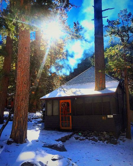 It's Cold Outside Forest Falls Snow Cabin Contest Followme Showcase: January Jessicagarciasphotography Loves2travel